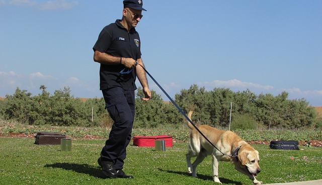 Policeman with a dog