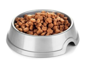 Some dry dog food in a metal bowl waiting to be eaten by a pup