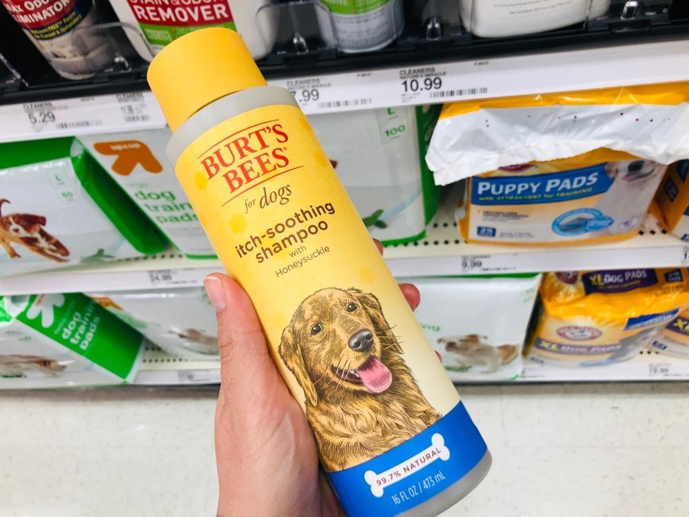 Me holding Burt bees dog shampoo in a pet shop