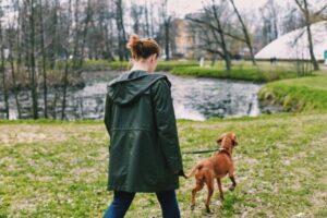 Lady walking dog through a park
